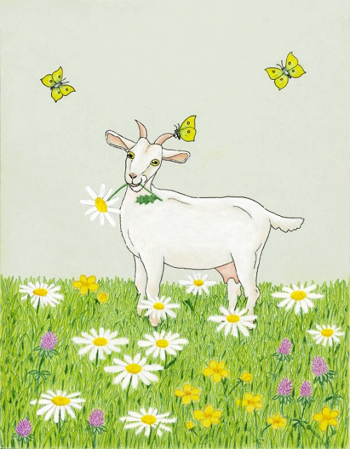 Koza v rožicah