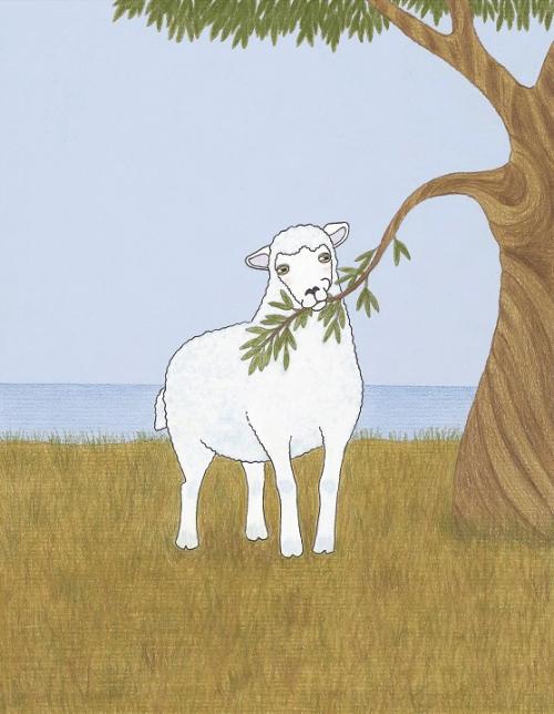 Ovca pod oljko